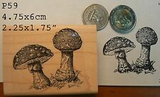 P59  Mushrooms rubber stamp WM