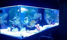 Custom Acrylic Aquarium You Can Build And Save BIG $$ Read On .....
