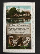 Vintage Postcard - Birthday Greetings Card - #A96 - RP Puppies & The Fish Inn