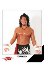 Official Dragon Gate - Yamato 8x10 picture