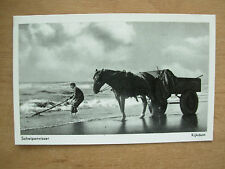 VINTAGE POSTCARD SHELL FISHERMAN WITH HORSE AND CART KIJKDUIN HOLLAND