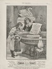 1899 ADVERT SWAN SOAP CHILDREN CAT