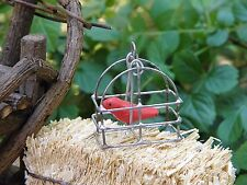 Miniature Dollhouse FAIRY GARDEN ~ TINY Hanging Bird Cage with Red Bird ~ NEW
