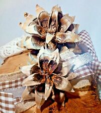 2 Ghost Pine Cone Flowers Craft Supply Nature Art Lodge Forest Rustic