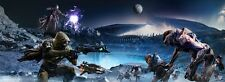 "Destiny Hot game Fabric poster 63"" x 24"" Decor 14"