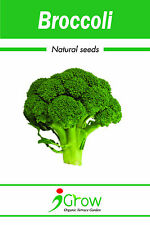 Naturally Treated Organic Broccoli Seeds (50 seeds)