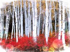 Crackling Birch Incense like a winter day outdoors W/ Free Sample