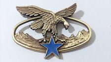 Brevet militaire BASM TROUPES DE MONTAGNE Bronze - Y.DELSART