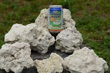 FLORIDA CORAL ROCK DRY LIVE ROCK REEF ROCK LIME ROCK 100 LBS 3 priority boxes