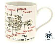 VINTAGE RETRO STYLE EDUCATIONAL SKELETON BONE COFFEE MUG CUP NEW & GIFT BOX