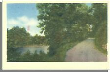 3710: 1940's USA Post Card - Country Lane in The Woods By a River in Summer!