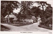 The Common Evershot Nr Beaminster unused RP old pc Bird & Son