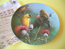 Goldfinch Collector Plate Knowles Kevin Daniel Birds of Your Garden