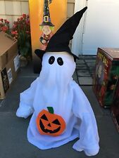 Ghost Witch Animated Halloween Decoration