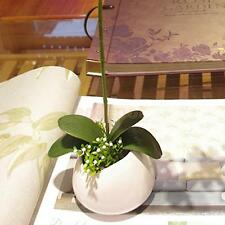 Green Artificial Butterfly Orchid Leaf Bush Simulation Grass Home Decor DIY