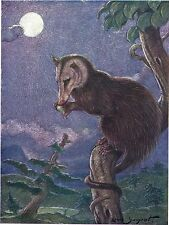 Vintage book plate/print by Louis A. Sargent of an American Opossum, Moonlight