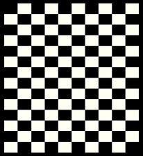 "Checkers Area Rug 2'x 3'8"" (60x110cm) Black White"