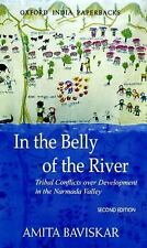 In the Belly of the River: Tribal Conflicts over Development in the Narmada Vall