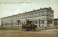 Postcard FL Tampa Largest Cigar Factory in World c1907-14 Unused Prntd Germany