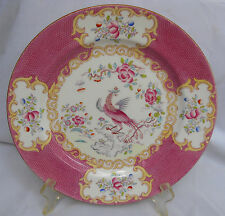 "MINTON COCKATRICE PINK DINNER PLATE S RARE GLOBE MARK 10""  ENGLAND 4863 SMOOTH"