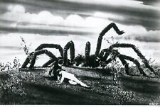 KINGDOM OF THE SPIDERS  1975 VINTAGE PHOTO ORIGINAL #2  SCI-FI  HORROR B-MOVIE
