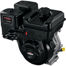 Briggs and Stratton 1450 Series 306cc Horizontal Engine (CA) 19N132-0055-F1 NEW