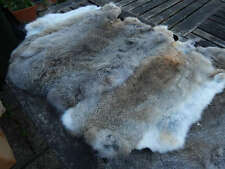 10 x Grey Brown Rabbit Skin Fur Pelts - craft, dummy, gun dog training, fashion