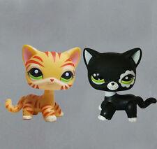 littlest pet shop LPS figure Black Cat & orange tiger striped Cat#505