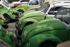 Old Volkswagen beetle taxis at a junk yard in Mexico City 8 x 10 Photograph