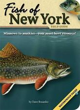 NEW - Fish of New York Field Guide (Fish Identification Guides)