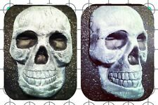 Skull Halloween Decoration Plastic Mold Plaster Concrete Cement