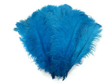 "Ostrich Feathers | Ostrich Large Drab Wholesale - 1/2 Lb 14-17"", Turquoise"