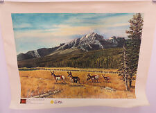 JODIE BOREN ON THE RANGE PAINTING IGI PAINT WILD LIFE LANDSCAPE ART 11858 MASTER