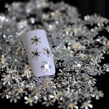 Nail Art 3D Silver PET Glitter Sheet Love Snow Flakes Snowflake Missing Winter