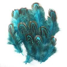 60pcs Aqua Blue Almond Pheasant Feathers for Craft Millinery Trimmings 4-9cm
