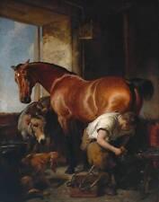 98 RARE HORSEMANSHIP BOOKS ON DVD - HORSE SHOEING RIDING FARRIER EQUESTRIAN VET