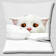 "CUTE WHITE KITTEN CAT PEEPING AMBER EYES PHOTO PRINT 16"" Pillow Cushion Cover"