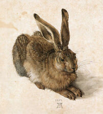 A Young Hare by Albrecht Dürer Giclee Fine Art Canvas Print