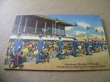 LINEN POSTCARD GREYHOUND RACING IN FLORIDA PARADE BEFORE FANS