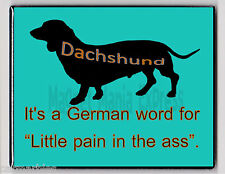 METAL MAGNET Dachshund German Word For Little Pain In Ass Dog Humor MAGNET X