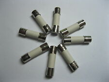 10 Pcs Slow Blow Ceramic Fuses 3.15A T3.15A 250V 5mm x 20mm