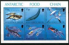 BRITISH ANTARCTIC - ANTARTICO BRITANNICO - 1994 - Catena alimentare antartica -