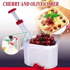 New Deluxe Cherry Olive Pitter Stoner Seed Remover Corer Container Kitchen Tool