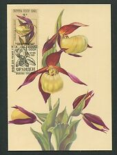 RUSSIA MK 1991 ORCHIDEEN ORCHIDEE ORCHIDS MAXIMUMKARTE MAXIMUM CARD MC CM m191