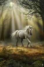 ANNE STOKES GLIMPSE OF A UNICORN POSTER (61x91cm)  PICTURE PRINT NEW ART