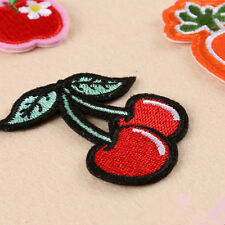 Embroidery Cherry Fruit Sew Iron On Patch Badge Clothes Bag Fabric Applique DIY