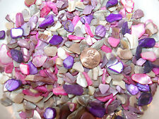 5 oz Purple Pink Crushed Seashells Mosaics Vase Filler Sea Shells Craft Jewelry