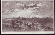 1873  --  BOURGOGNE  LA RECOLTE DES BETTERAVES EN NIVERNAIS   Z970