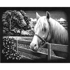 Reeves Engrave Art Set SCRAPERFOIL Silver Engraving PONY