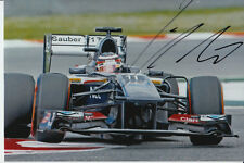 NICO HULKENBERG HAND SIGNED SAUBER F1 6X4 PHOTO.